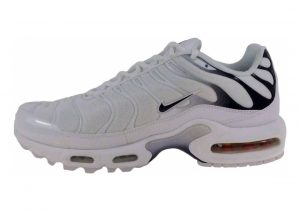 Nike Air Max Plus Grey