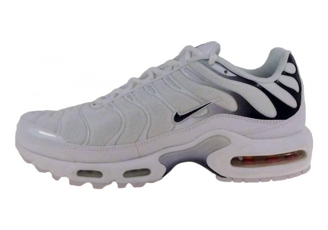 Nike Air Max Plus Grey