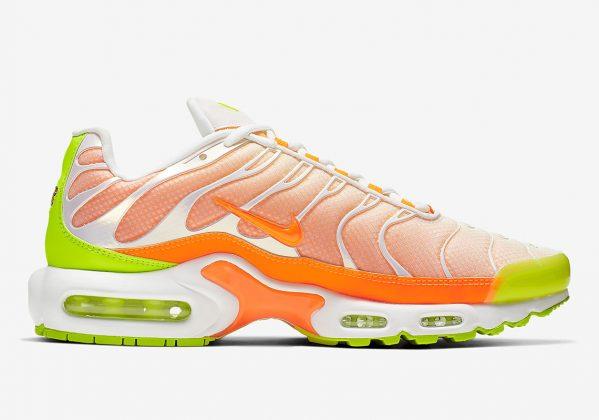 Nike Air Max Plus Color Flip
