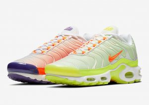 Nike Air Max Plus Color Flip