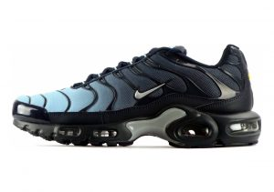 Nike Air Max Plus blue wolf grey 424