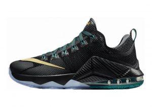 Nike LeBron XII Low Black