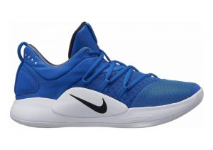 Nike Hyperdunk X Low Royal/White