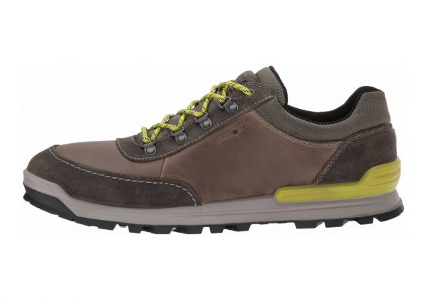 Ecco Oregon Retro Sneaker Brown