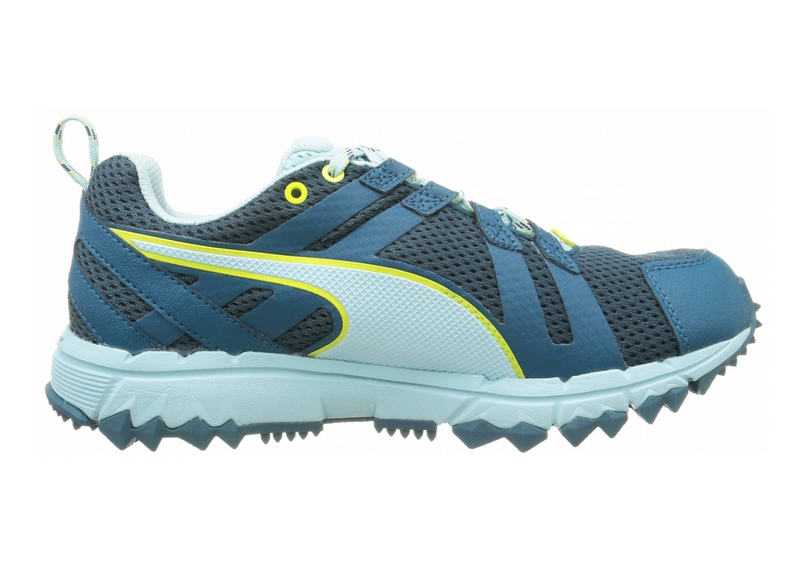 Puma Faas 500 TR v2 GTX Blue (Blue Coral-clearwater-clearwater 01)