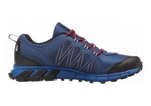 Reebok Trail Run RS Batik Blue / Handy Blue / Steel Grey / Neon Cherry