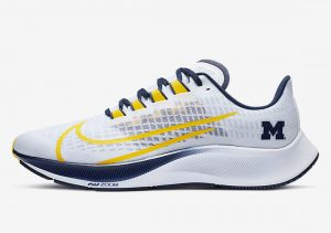Nike Zoom Pegasus 37 MICHIGAN