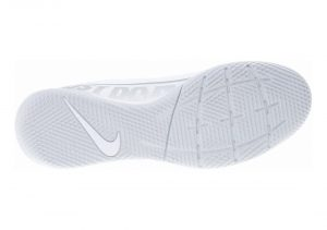 White/Silver (AT7993100)