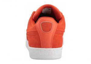 Orange (36259304)