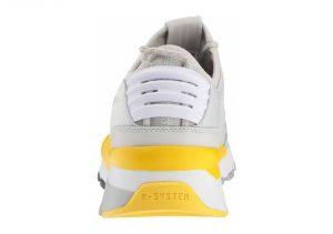 Gray (36751503)