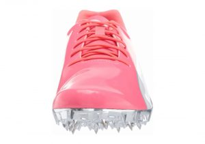 Pink (19345102)