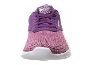 Purple (V72733)