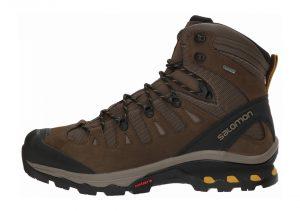Salomon Quest 4D 3 GTX - Brown (L401518)