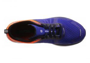 Blue (L401373)