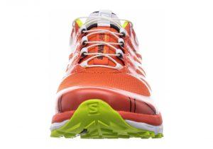 Orange (L369814)