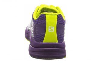 Purple (L379173)