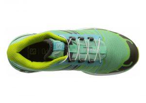 Green (L379088)